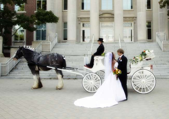 Horse-drawn carriage in front of church