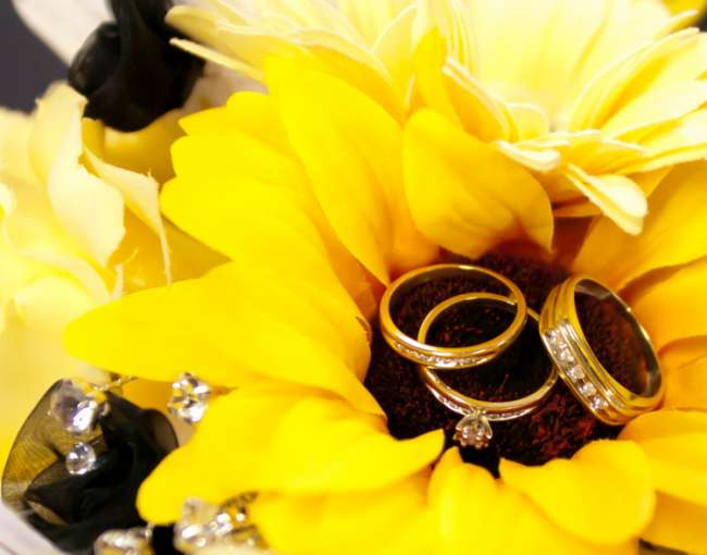 Sunflower holding wedding rings
