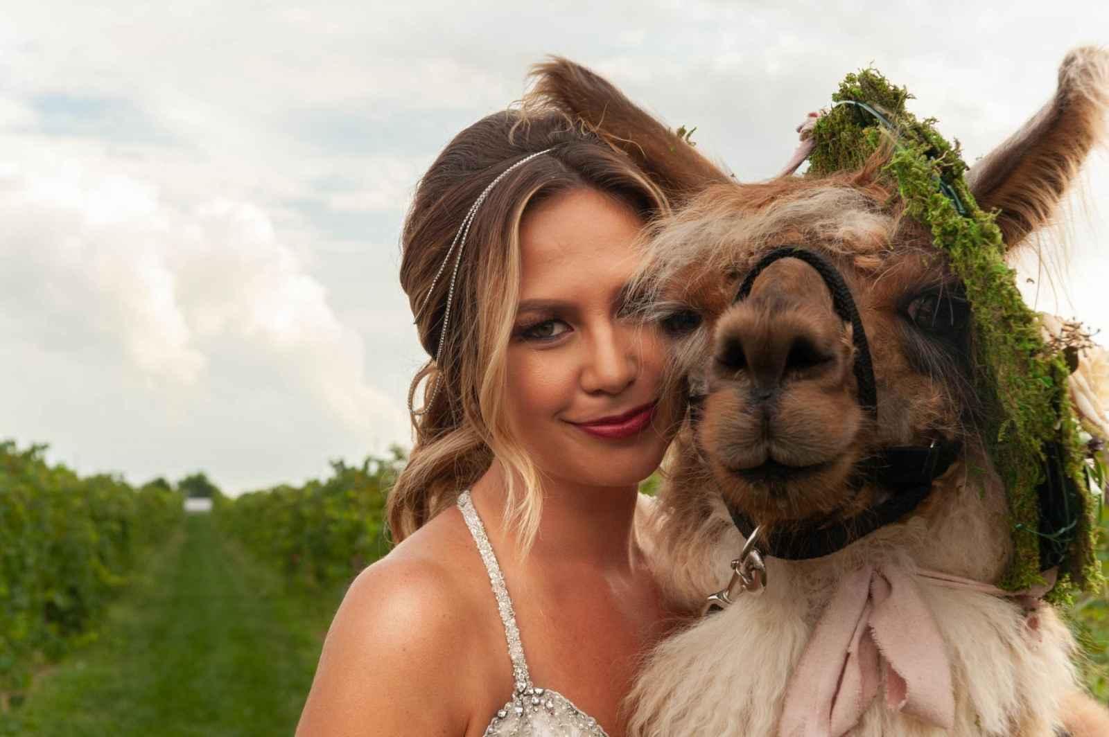 Going Vineyard Glam With Llamas Weddingday Magazine